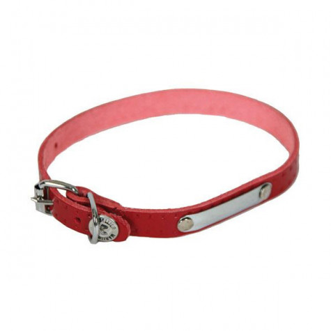 martin sellier Collier pour chien 40cm rouge martin sellier