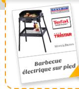 Barbecue électrique sur pied